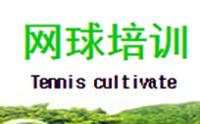 上海 迅杰网球培训部logo
