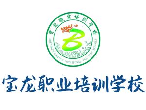 寶龍職業培訓學校
