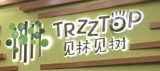 上海见林见树国际早教中心logo
